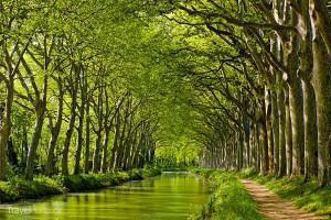ozdobou jižní Francie je také Canal du midi