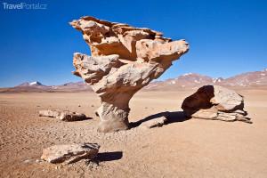 Árbol de Piedra neboli Kamenný strom