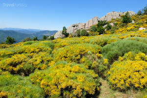 pohoří Cévennes