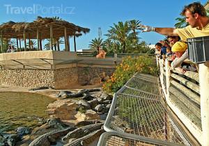 Krokodýlí farma Djerba