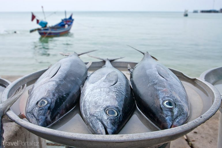 Čerstvé ryby Chorvatsko