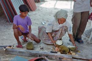 Porcování durianu Toba