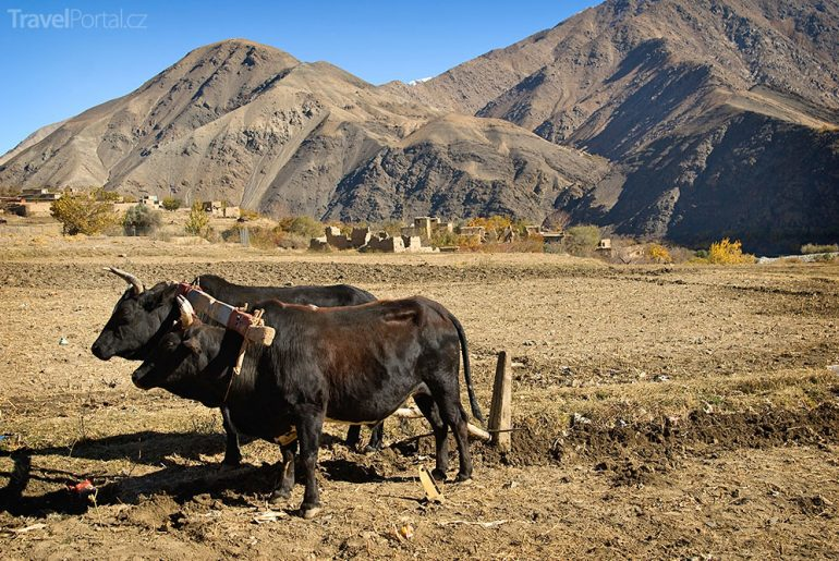Panjshir Afghánistán