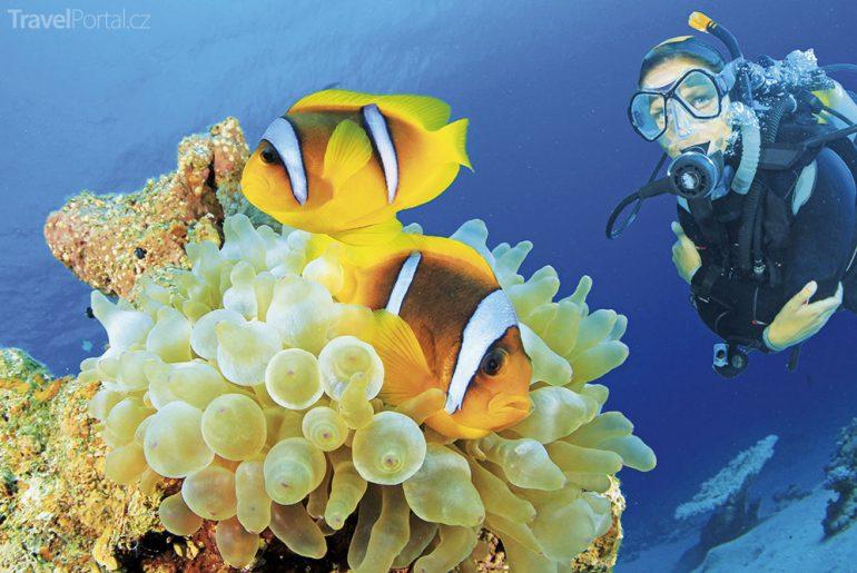 nejlepší potápěčské lokality na světě