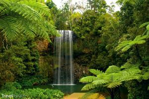 Džungle Malajsie