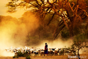 safari Keňa