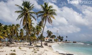pobřeží s palmami Jamajka