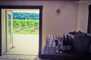 vinařství Niagara