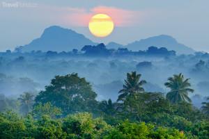 džungle Srí Lanka