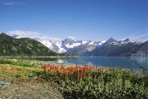 příroda Aljaška