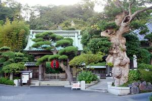 chrám Kamakura