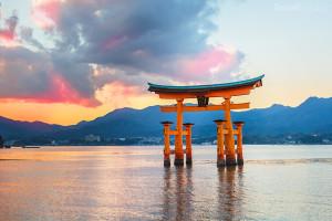 Brána torii svatyně Icukušima