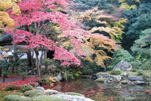 podzim v Kamakuře