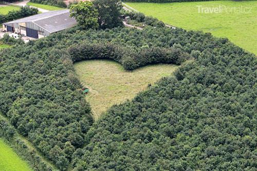 symbol lásky mezi duby