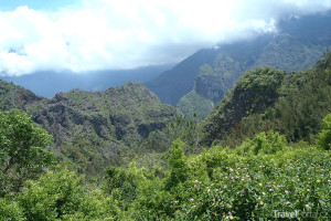 deštný prales Réunion