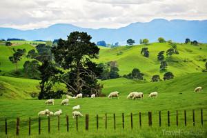 Hobitín Nový Zéland