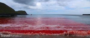 krvavé moře u Faerských ostrovů