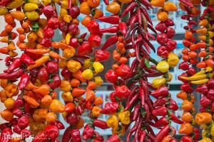 papričky a feferonky Mallorca