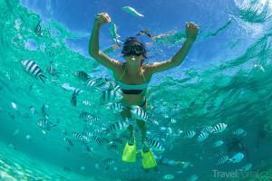 potápění u ostrova Mauricius