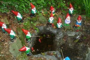 Trpaslíci v Gnome Reserve