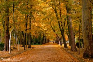 Aranjuez na podzim