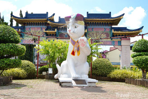 socha kočky v Kuchingu