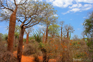 vnitrozemí Madagaskaru