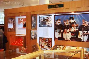 muzeum koček