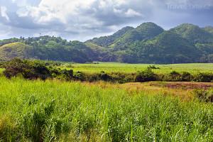 hory na Jamajce
