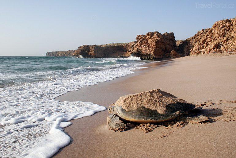 pláž v Rass al-Hadd