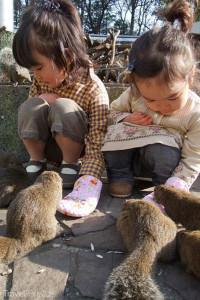 děti ve Squirrel Garden