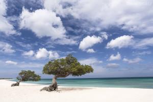 pláž na Arubě