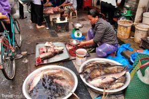 trh ve Vietnamu