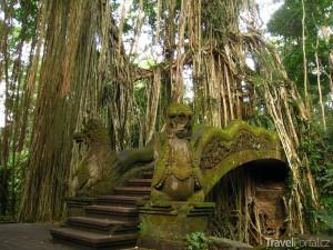 posvátný park Monkey Forest
