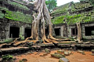 Na belfie v chrámovém komplexu Angkor Wat v Kambodži zapomeňte.