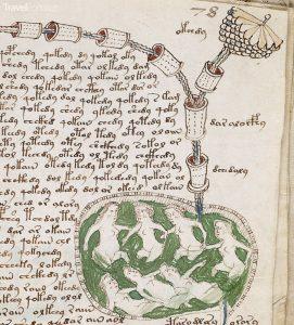 Vojničův neboli Voynichův rukopis