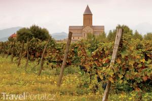 vinice v Kachetii