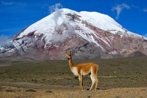 vyhaslá sopka Chimborazo