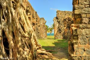 ruiny Fort Rodney