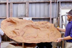 největší stopa dinosaura na světě