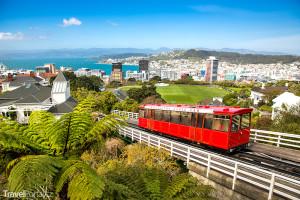 Také metropole Wellington hlásí: Obsazeno!