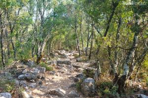 cesta vedoucí do města Termessos