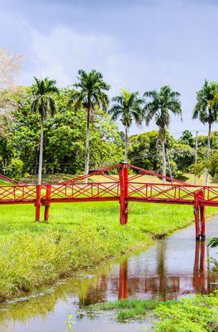 Surinam: Jihoamerická země, která se zavděčí dobrodruhům