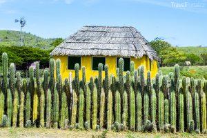 domek a plot z kaktusů na Bonaire
