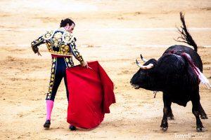 býčí zápasy ve Španělsku