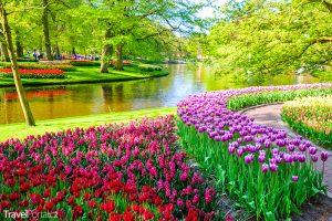 Květnové svátky 2018 aneb Keukenhof