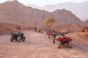 čtyřkolky v poušti na Sinajském poloostrově