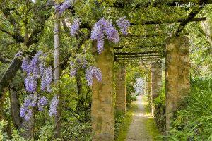 zahrady v Mentonu