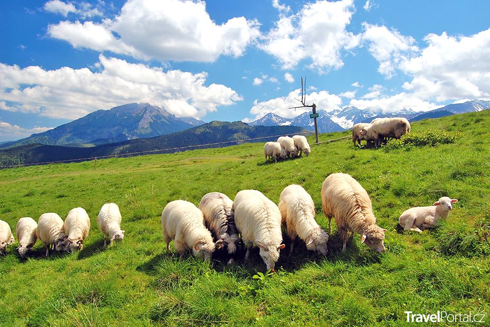 Vysoké Tatry jsou ideální destinací pro léto 2019
