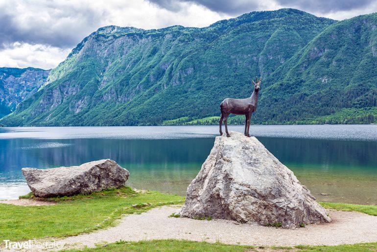 socha kamzíka na břehu jezera Bohinj